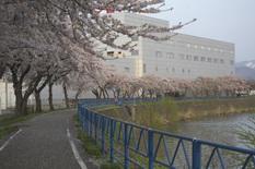 20110507_53